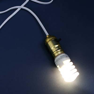 small compact fluorescent bulb