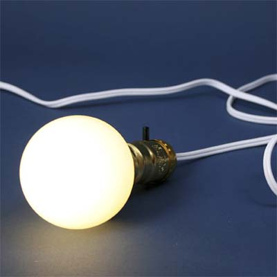 compact fluorescent light bulb in special decorative shape