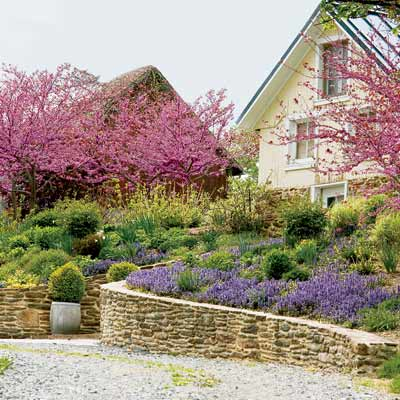 a stone retaining wall