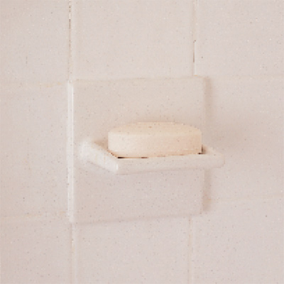 soap dish in shower