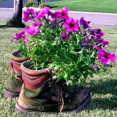old work boots become planters in the garden
