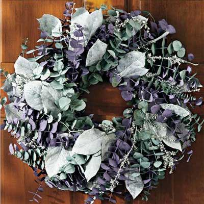 Living eucalyptus wreath