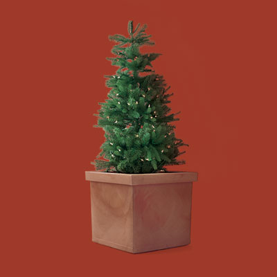a resin planter made to look like terra-cotta large enough to fit a small Christmas tree