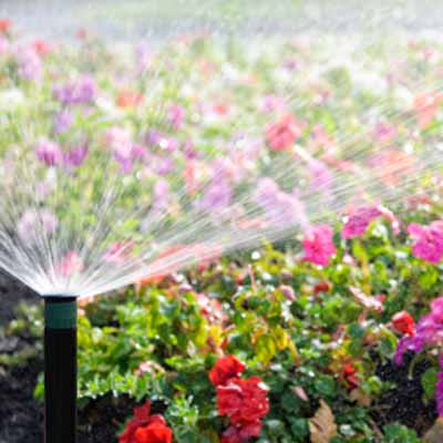 in ground sprinkler watering flower garden