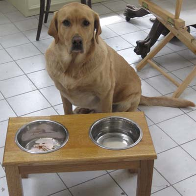 wood dog feeding station
