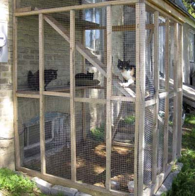 cat cage in backyard