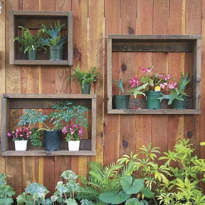 wooden wall with small plants mounted in shadow boxes