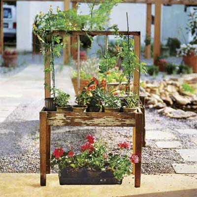 an old window frame without glass makes a trellis for climbing plants
