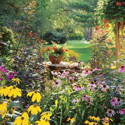 lush garden with blooming perennials