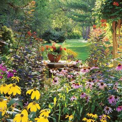 lush garden with blooming perennials