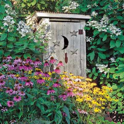 charming wooden shed in garden