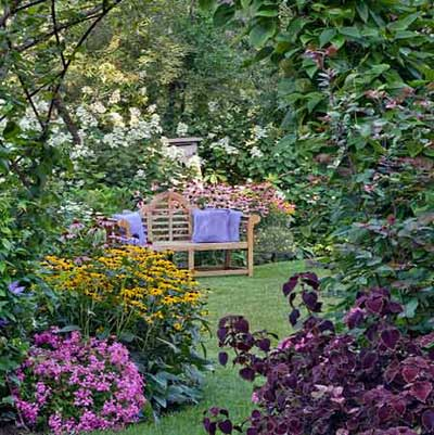 wooden bench in flowering backyard