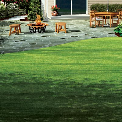 detail of curve in lawn