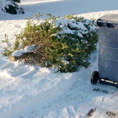 Christmas tree problem