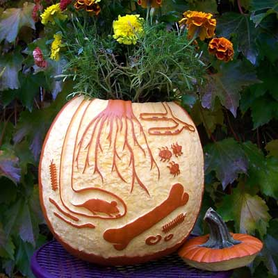 subterranean planter scene carved pumpkin for contest