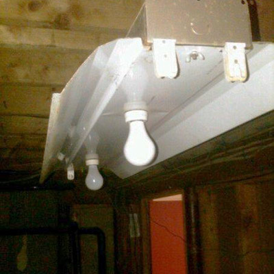 Incandescent bulbs in an an old fluorescent fixture