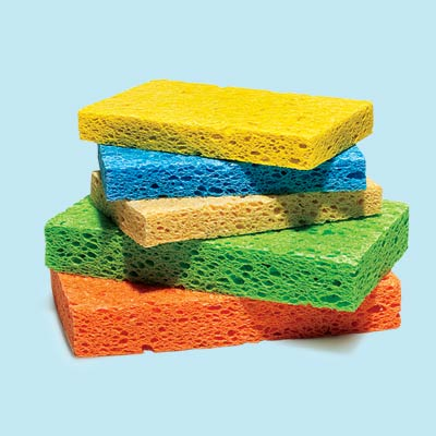 sponges