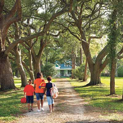 treelined entrance to remodeled farmhouse