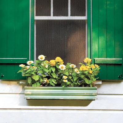 Window Box with Vintage Trim