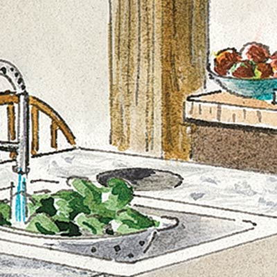 an illustration of a cutout next to a farmhouse sink for collecting food scraps