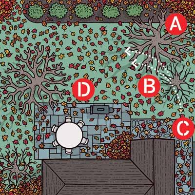 Illustration of yard