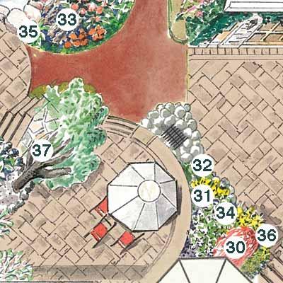 illustration of garden plan
