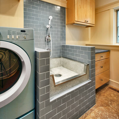 a laundry room and pet shower