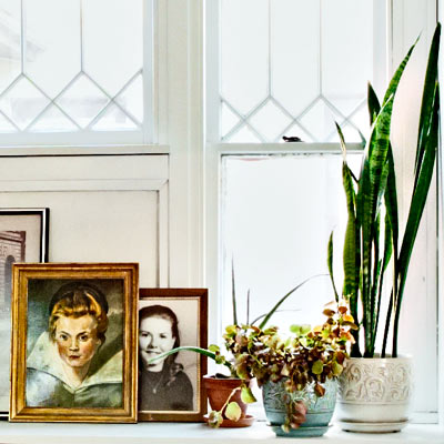 potted plants and photos lined up on window sill
