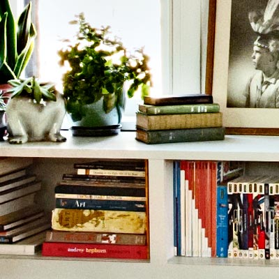 built-in bookshelves with white trim