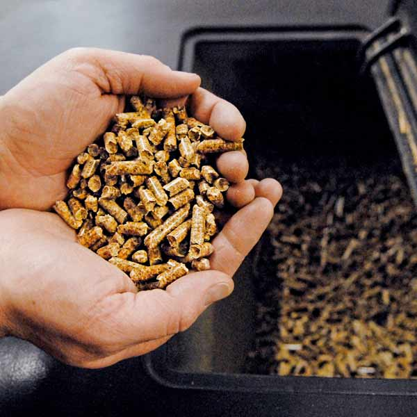 person holding wood pellets above wood pellet stove
