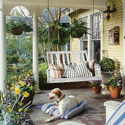 a porch with swing, dog and planters