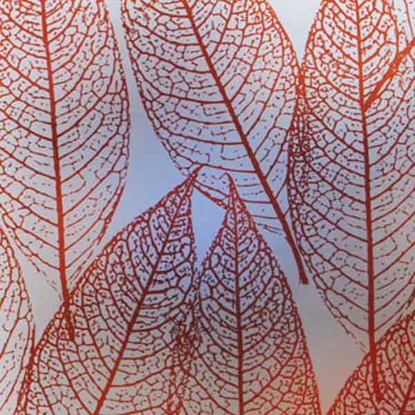 window film with leaf print