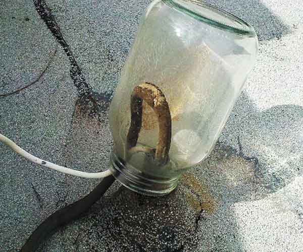 a jar used to keep the rain off of an external, exposed electrical wire in the this old house Home Inspection Nightmares XXVIII gallery