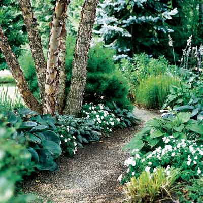 backyard pathway and planting beds with annuals and perennials