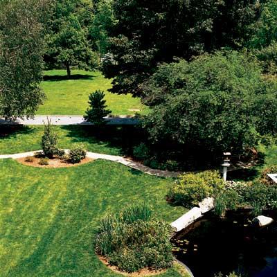 backyard curved garden paths