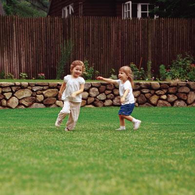 kids playing in yard