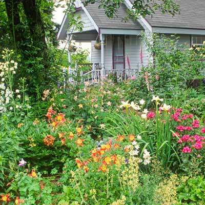 house garden with white picket fence and flowers