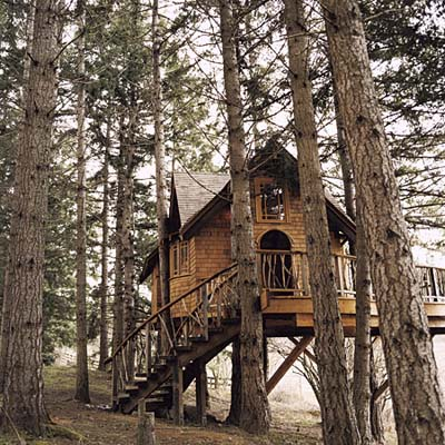 tree house in Washington state