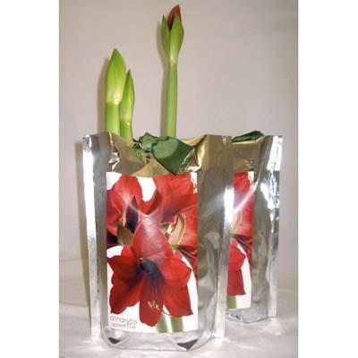 red flowers in leak proof silver bag