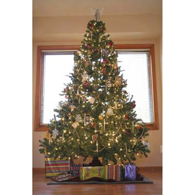 TOH Holiday contest winner, tree category