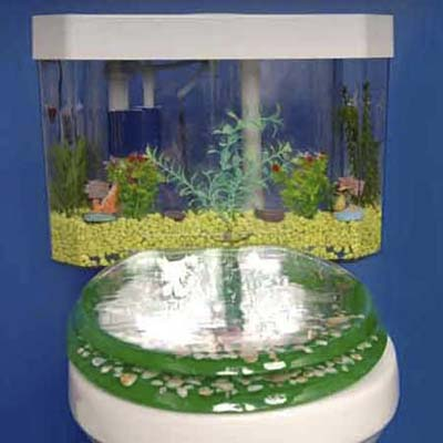 aquarium toilet tank