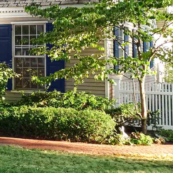 curb appeal boost on budget cape cod style home colonial williamsburg style fence