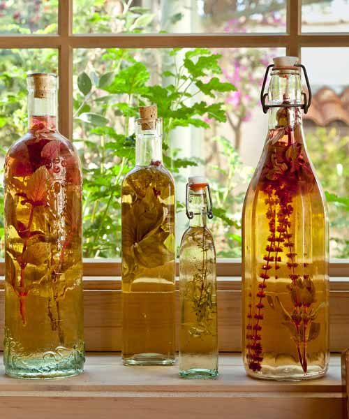 herb infused vinegars made from dried herbs inside cottage style garden shed used as bonus room