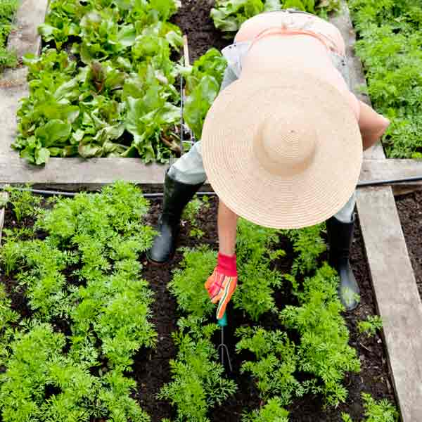 DIY calorie burners woman digging a garden bed