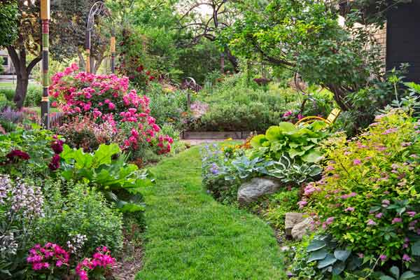 one perennial garden turns into another creating a