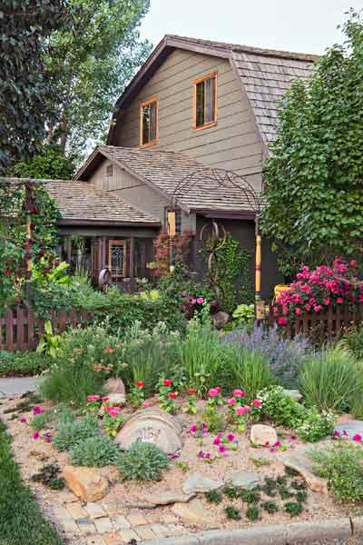 secret garden on urban plot side of house, planting strip between sidewalk and street with perennials, petunias, zinnias, yarrow, catmint, manzanita panchito, golden storksbill