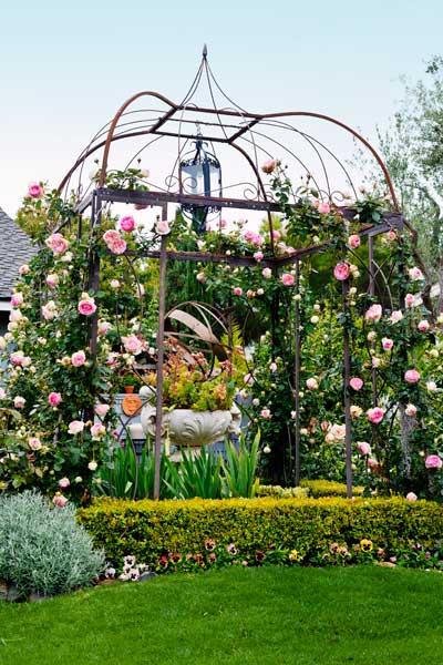 garden planning romantic gardens pink eden roses on iron pergola