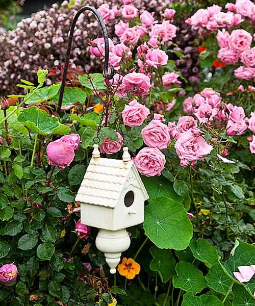 garden planning romantic garden birdhouse