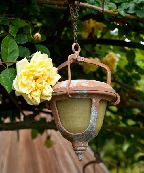 garden planning romantic garden solar light as decoration from trellis, with antique rose