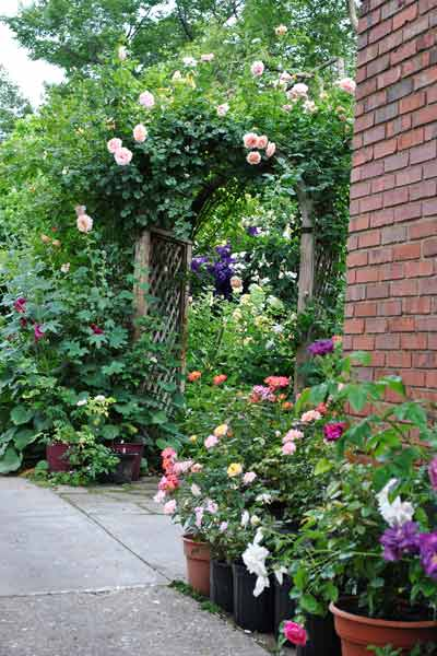 cottage garden with potted rose plants along driveway after reader remodel contest 2013